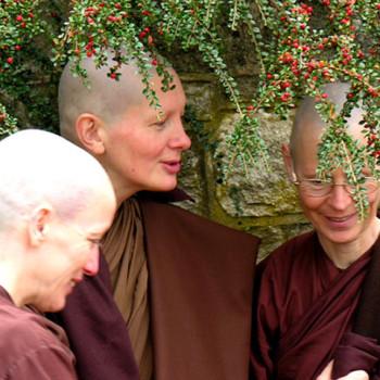 Ajahns Kovida and Thitamedha with Sister Jotipanna, Chithurst