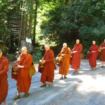 Bhikkhuni gathering at Aranya Bodhi Hermitage, June 2013