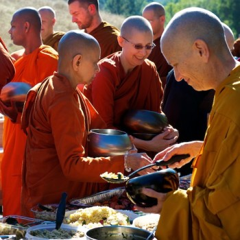 Senior bhikkhunis, Spirit Rock, Oct 2011