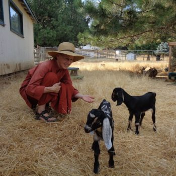 Ayya Ahimsa visiting goats at Theresa's farm ~ Thanks for the milk offerings dear goats!