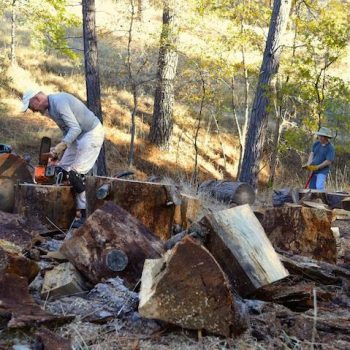 Robert & Neil turning fallen trees into fire wood