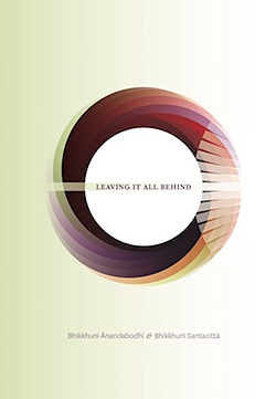 Leaving it All Behind - book