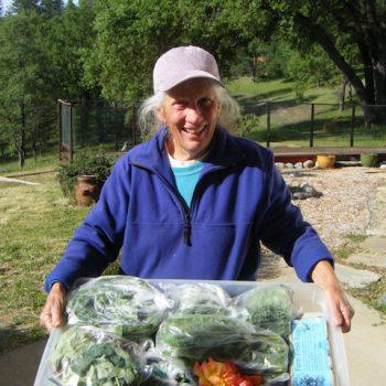 Lisa of Five Strings Farm bringing weekly dana