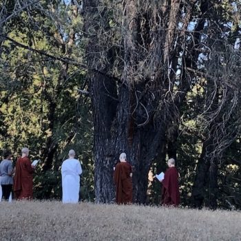 Chanting on the land
