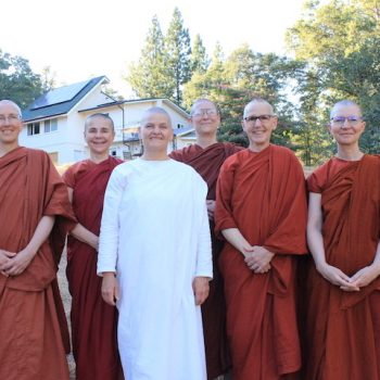 5 bhikkhunis, 1 anagarika and 18 solar panels